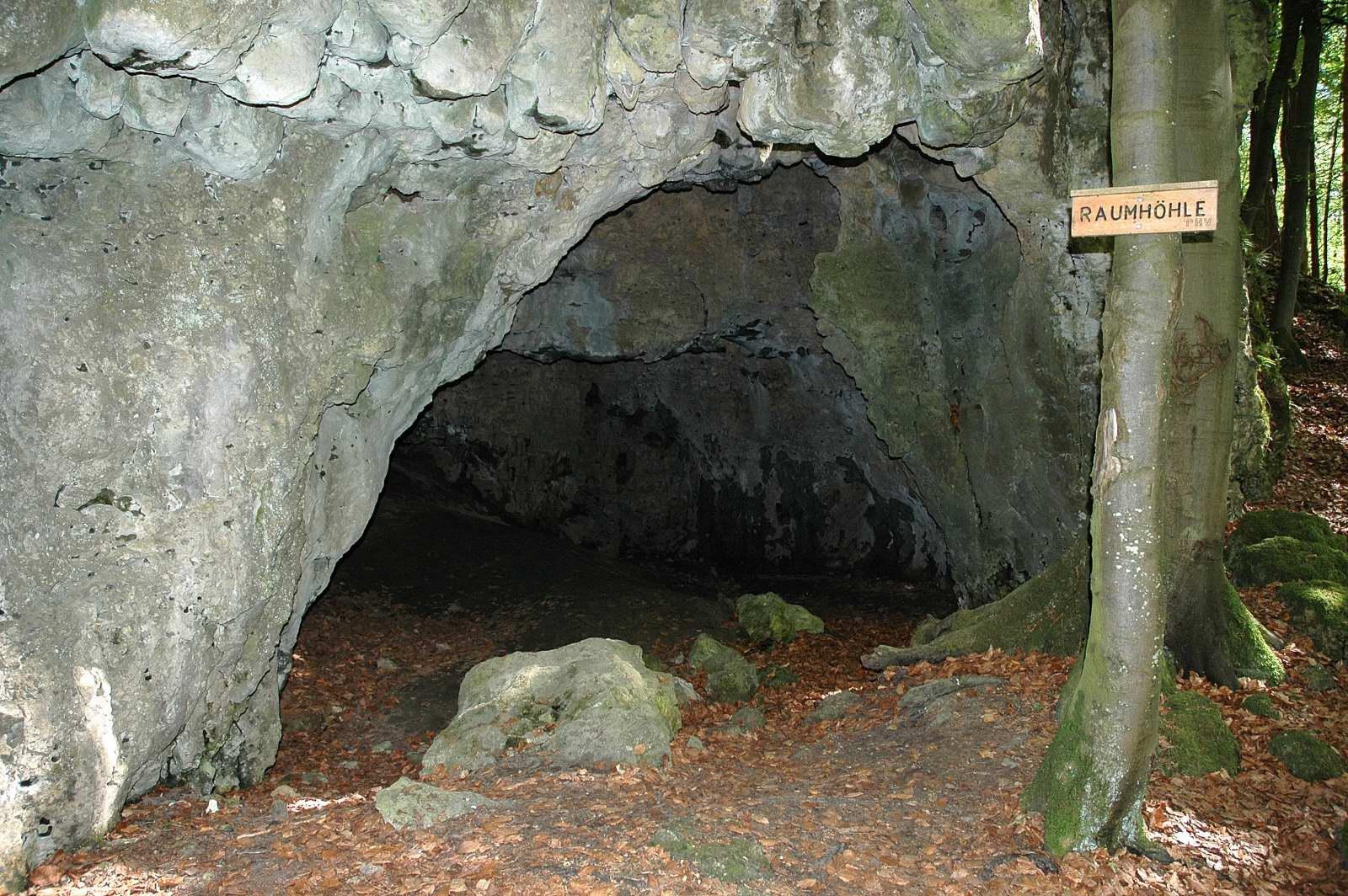 Naturpark Fränkische Schweiz - Veldensteiner Forst > Welcome